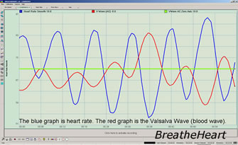 Valsalva Wave And Heart Rate