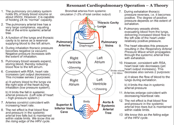 Cardiopulmonary Resonance - A Theory Of Operation